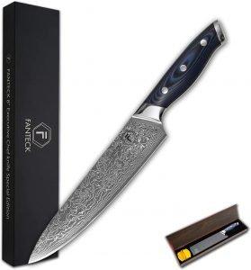 Fanteck 8 Inch Vg 10 Damascus Steel Knife