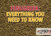 Fenugreek: Everything You Need To Know