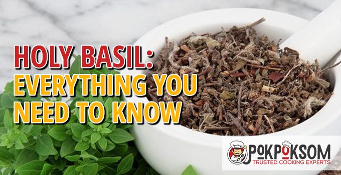 Holy Basil Everything You Need To Know