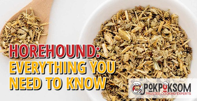 Horehound Everything You Need To Know