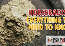Horseradish: Everything You Need To Know