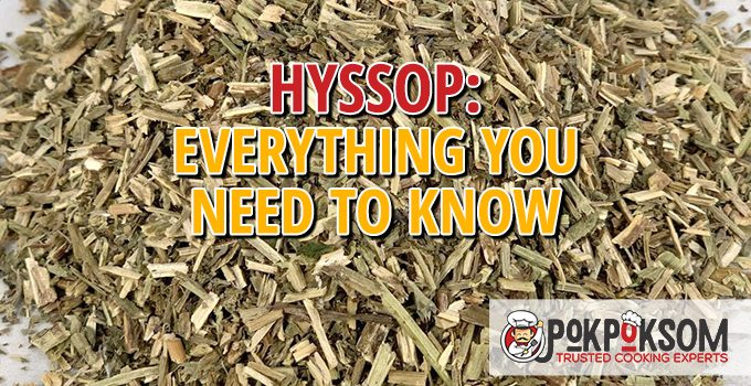 Hyssop Everything You Need To Know
