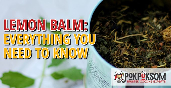 Lemon Balm Everything You Need To Know