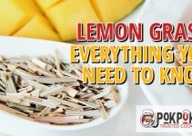 Lemon Grass: Everything You Need To Know