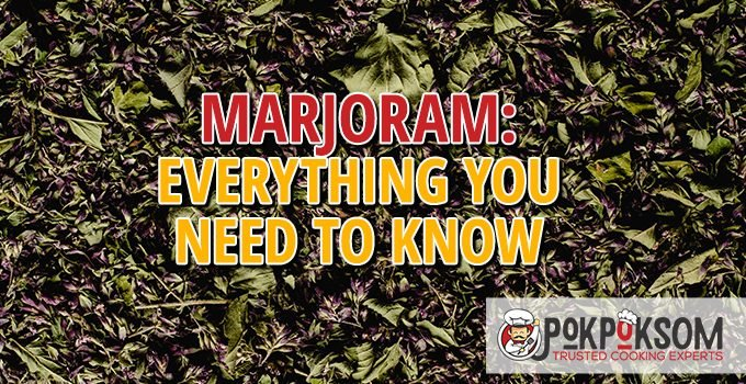 Marjoram Everything You Need To Know