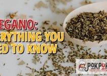 Oregano: Everything You Need To Know