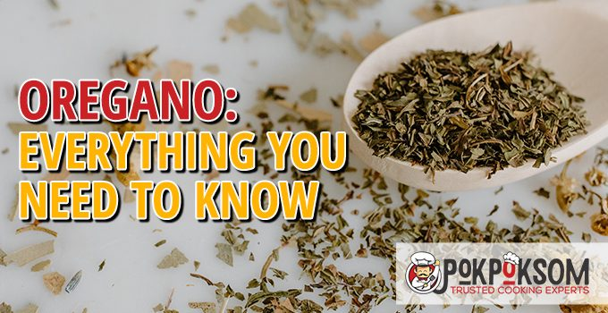 Oregano Everything You Need To Know