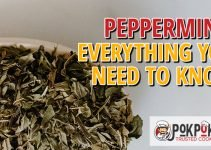 Peppermint: Everything You Need To Know