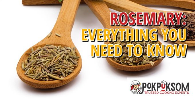 Rosemary Everything You Need To Know