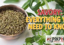 Savory: Everything You Need To Know