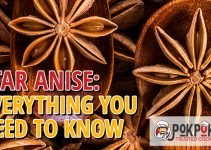 Star Anise: Everything You Need To Know