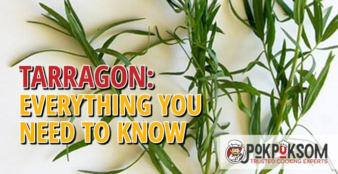 Tarragon Everything You Need To Know
