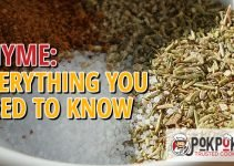 Thyme: Everything You Need To Know