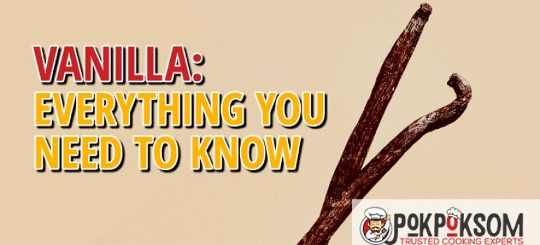 Vanilla Everything You Need To Know