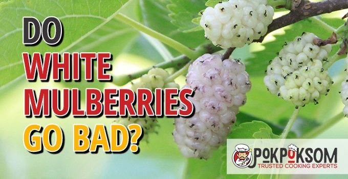 Do White Mulberries Go Bad