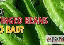 Do Winged Beans Go Bad?