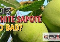 Does White Sapote Go Bad?