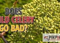Does Wild Celery Go Bad?