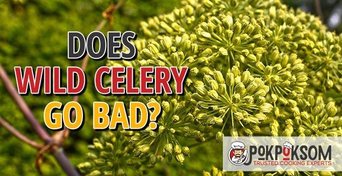 Does Wild Celery Go Bad