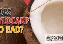 Does Xylocarp Go Bad?
