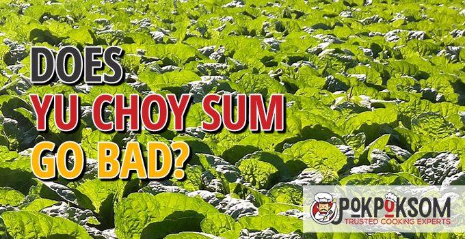 Does Yu Choy Sum Go Bad