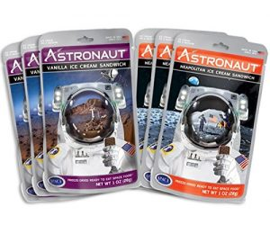 Astronaut Foods Ice Cream Sandwich