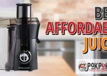 5 Best Affordable Juicers (Reviews Updated 2021)