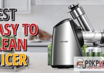 5 Best Easy To Clean Juicers (Reviews Updated 2021)