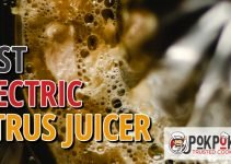 5 Best Electric Citrus Juicers (Reviews Updated 2021)