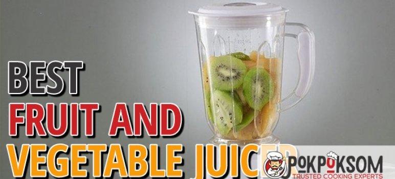 Best Fruit And Vegetable Juicer