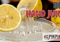 5 Best Hand Juicers (Reviews Updated 2021)