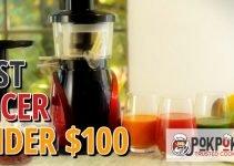 5 Best Juicers Under $100 (Reviews Updated 2021)