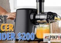 5 Best Juicers Under $200 (Reviews Updated 2021)