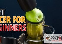 5 Best Juicers for Beginners (Reviews Updated 2021)