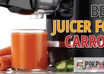 5 Best Juicers for Carrots (Reviews Updated 2021)