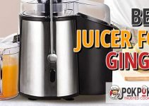 5 Best Juicers for Ginger (Reviews Updated 2021)