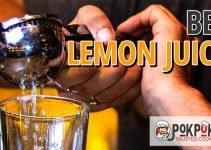 5 Best Lemon Juicers (Reviews Updated 2021)