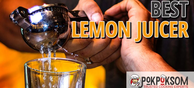 Best Lemon Juicer