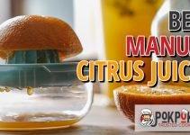 5 Best Manual Citrus Juicers (Reviews Updated 2021)