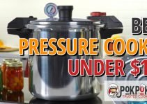5 Best Pressure Cookers Under $100 (Reviews Updated 2021)