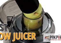 5 Best Slow Juicers (Reviews Updated 2021)