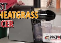 5 Best Wheatgrass Juicers (Reviews Updated 2021)
